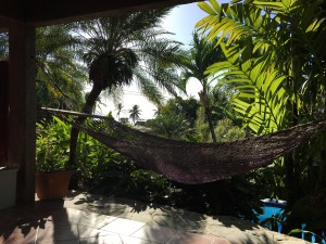 Hammock on a Patio with Palm Trees