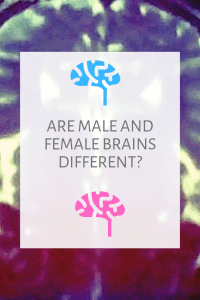 Are Male and Female Brains Different Pinterest Image