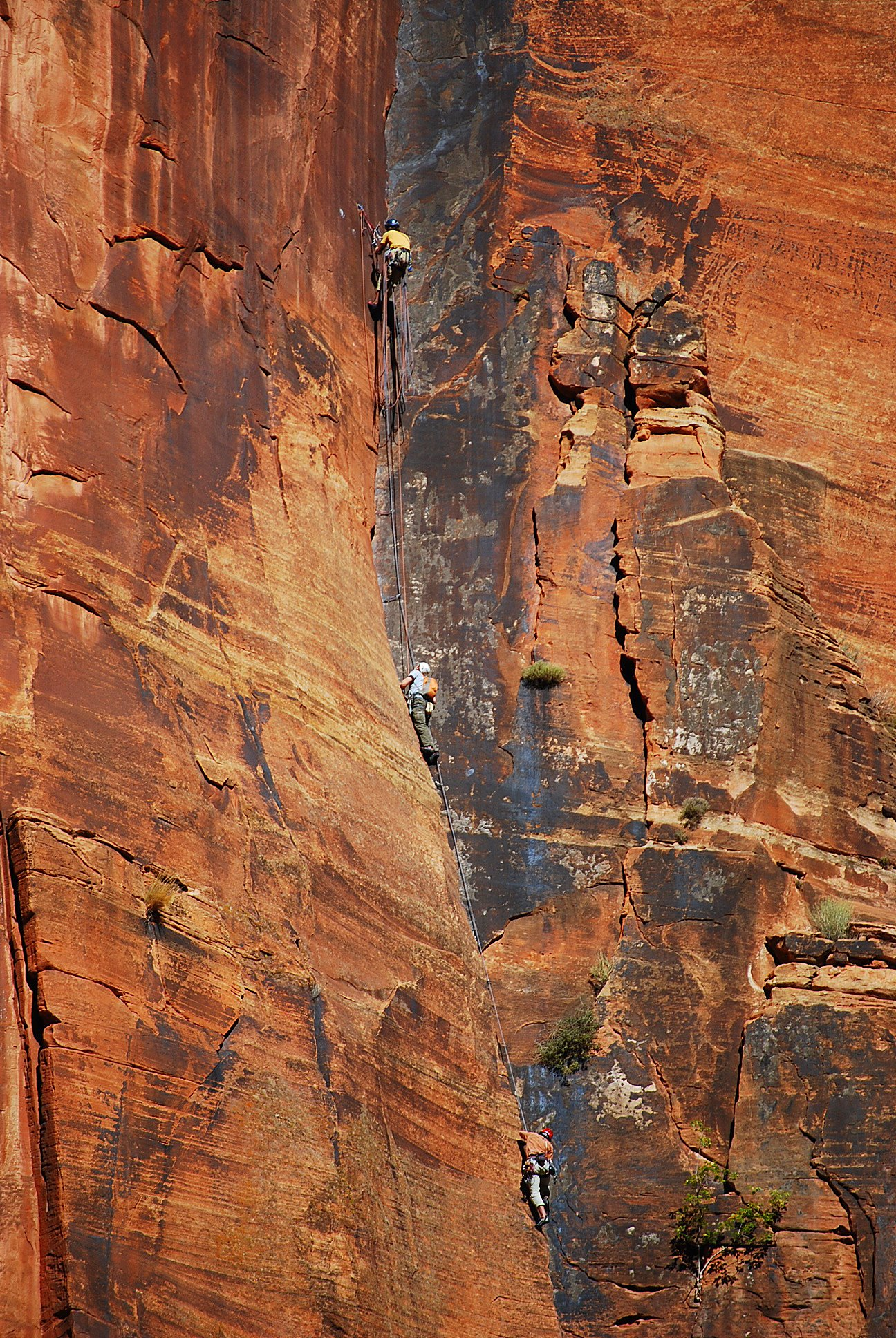 These rock climbers are linked together in Zion National Park in Utah.  It's a metaphor for how we are all dependent on one another -- and a good excuse to use one of the photographs from my recent tour of the park!  I won't mention how crazy those guys are!