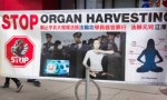 Organ harvesting: Unmatched wickedness