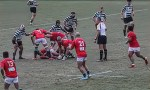 'N' word and alcohol spark rugby brawl