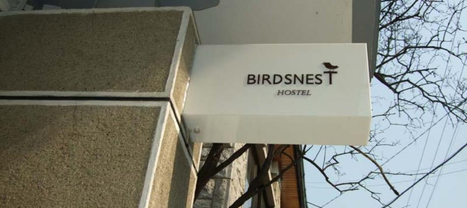 Birdsnest Hostel Hongdae