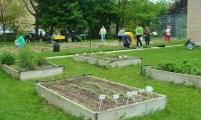 St. Bridgets Angel Garden