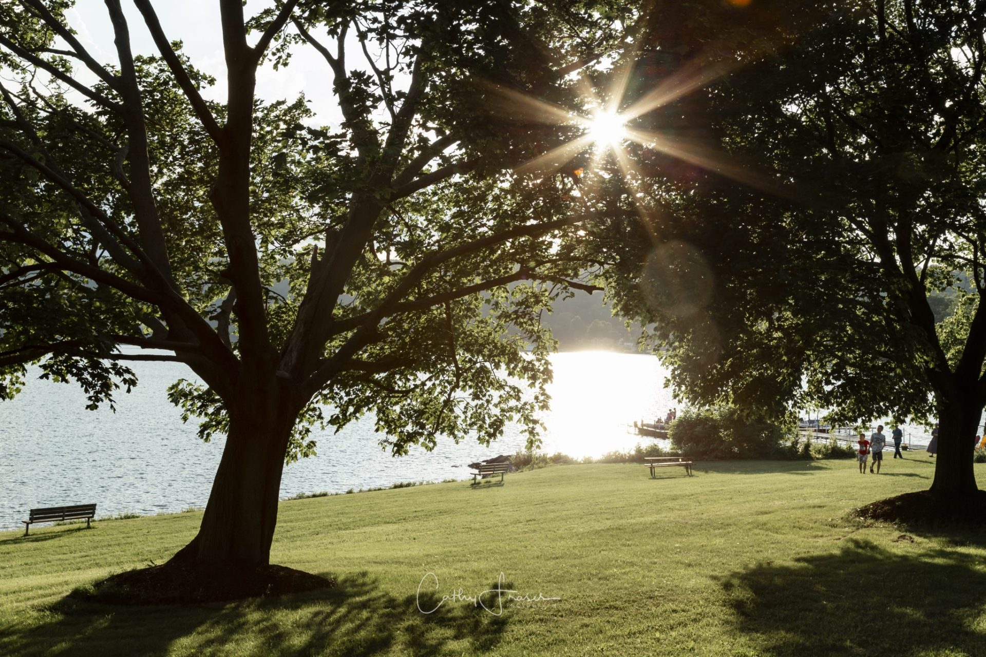 Landscape photography of a park in front of a lake in new york