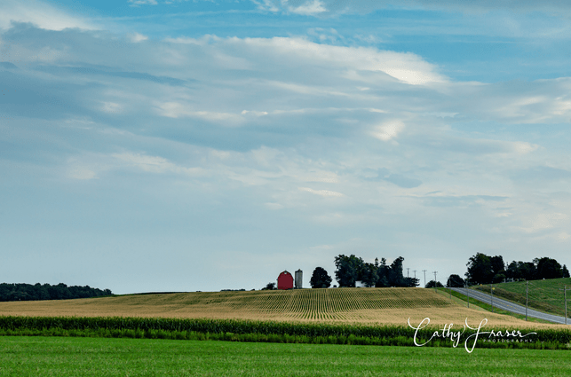 Landscape Photography of a farm under a blue sky in the summertime of New York