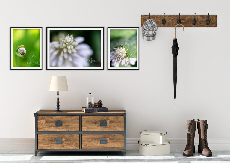 Quality Print Decor Set of flowers in entryway of home