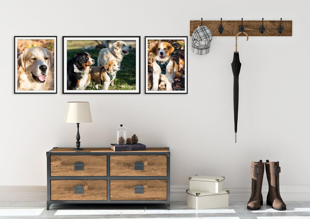 Quality Print Decor of a dog grouping in entryway of home