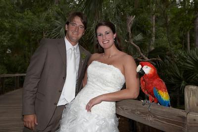 Zoo Wedding Recap :  wedding brown ch515 feather fern green hypericum berries lime publix recap wedding zoo 909108197 Hgrkp S