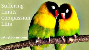 pic compassion lifts