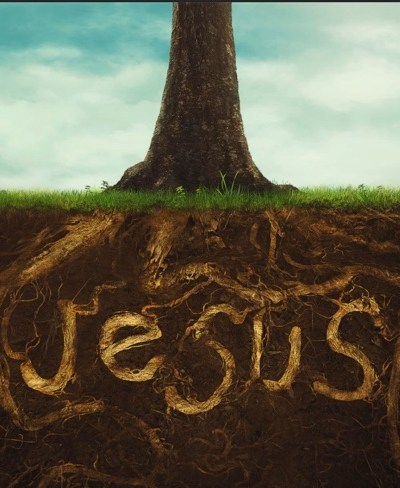 Rooted in God's love