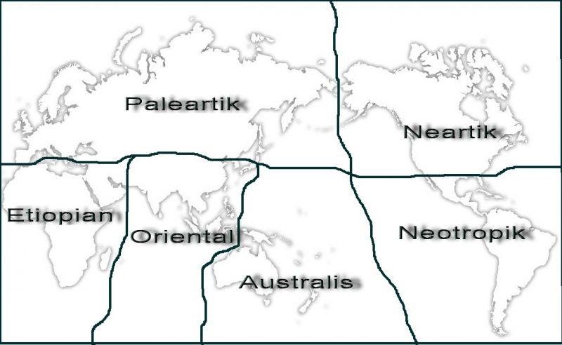 Peta Zona Australis