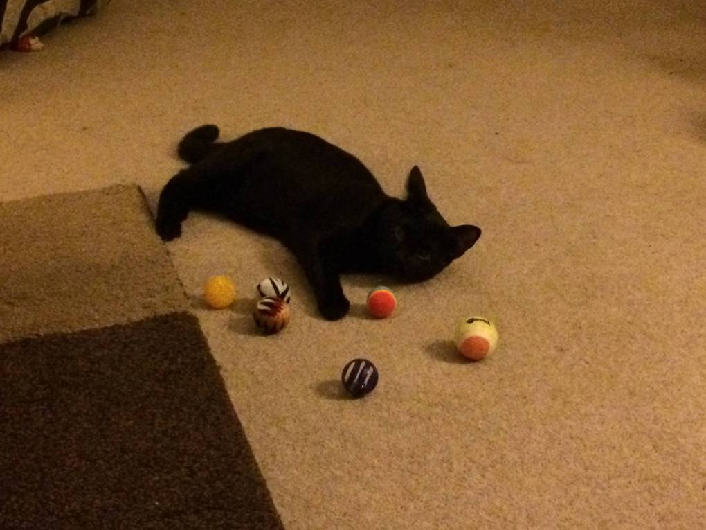 Nubia and the balls
