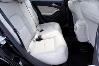 white car interior; clean to kill any fleas