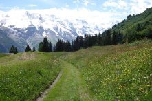 Adventure trail at Murren