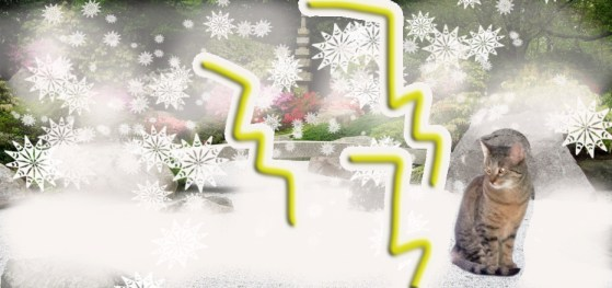 Meditating in the snow amidst the lightning and thunder. And yet, I stay zen.