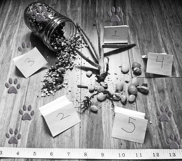 The Crime Scene.