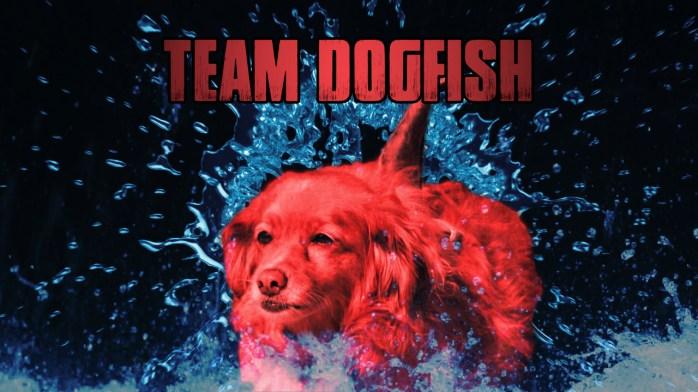 airpaws_teamdogfish