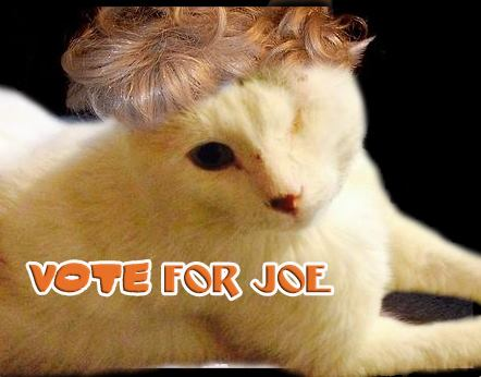 Joe trying out a new look while campaigning.