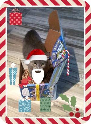 louie santa box