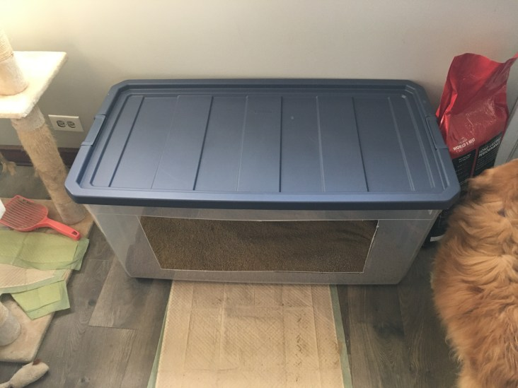 large litter box with lid on it