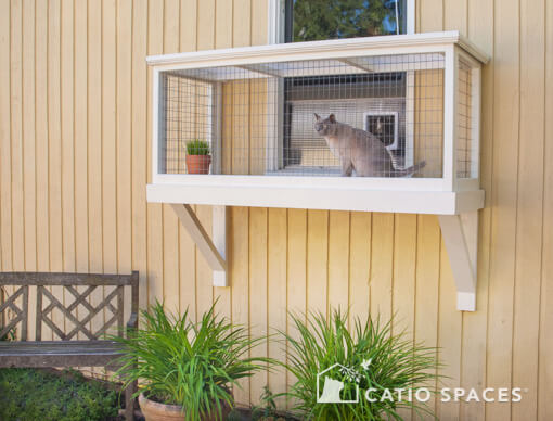 to build a window box enclosure for