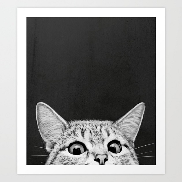 Are you asleep yet - cat print