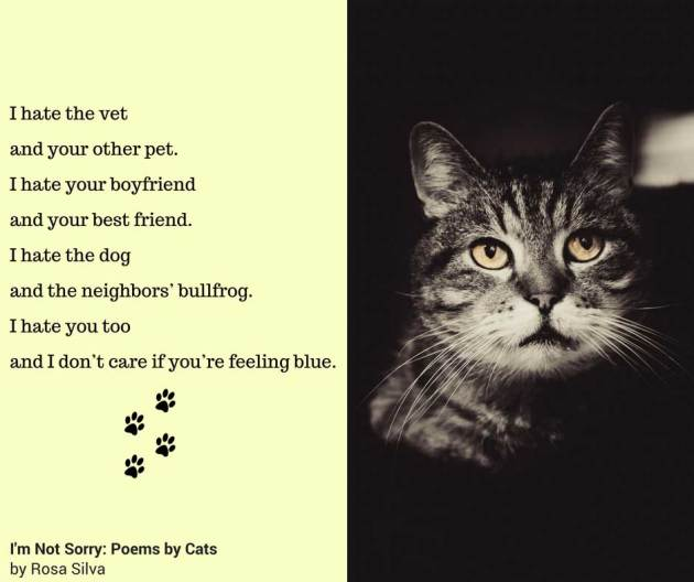 """I'm Not Sorry: Poems by Cats"" is here! 