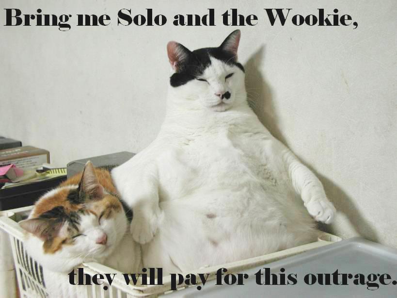star wars jabba the hutt solo wookie return of the jedi fat lol cat macro