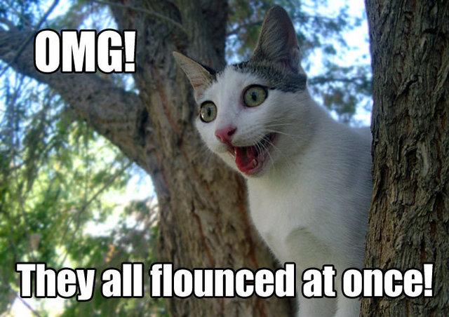 flounce flouncy tree butthurt internets lol cat macro