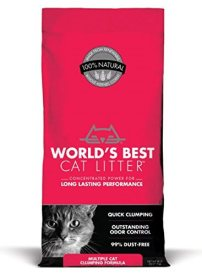 The Best Non Tracking Cat Litter