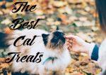 The Best Cat Treats