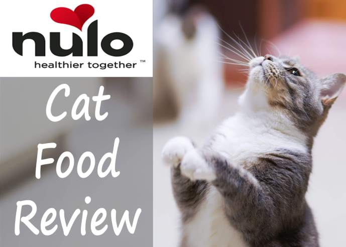 Nulo Cat Food Review