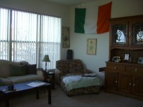 A grand view of the living room from the dining room. My national flag was what inspired the color pallet in the first place.
