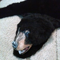 """BEAR RUG for play """"Happy Birthday Wanda June"""" by Kurt Vonnegut performed by Run-Of-The-Mill Players"""
