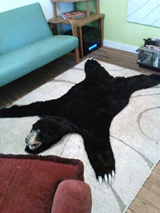 Bear8_sm