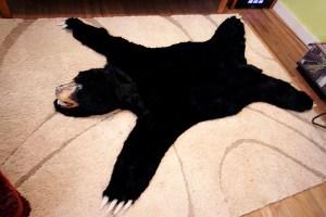 BearRug4