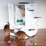 Cat Enclosures - Kits 4 Cats Complete