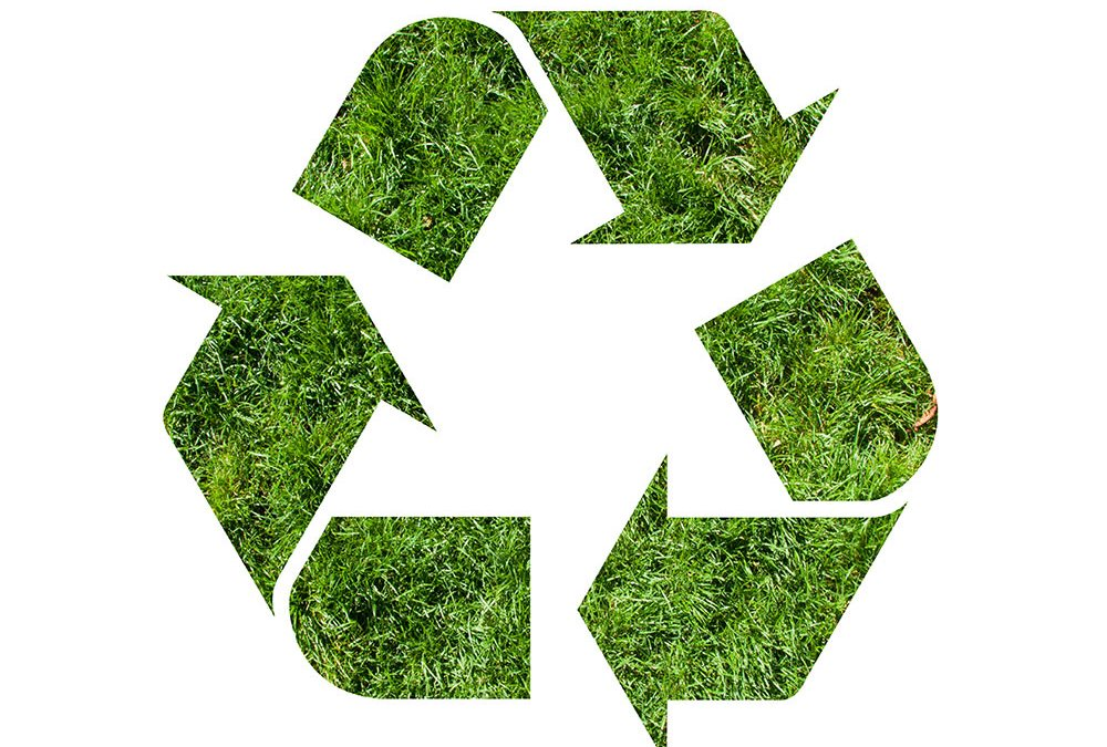 Your guide to recycling green waste