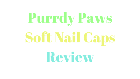 Purrdy Paws for Cats