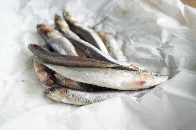 anchois frais