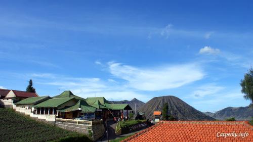 Langit biru, Gunung Batok dan Gunung Bromo berada di sebelahnya, pemandangan ini saya dapatkan dari penginapan seharga 250 ribu yang bisa ditempati oleh 3 orang. Not too pricey for priceless view ^^