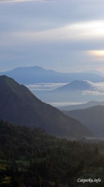 Pemandangan hijau berbukit ini masuk ke dalam bagian Kota Probolinggo