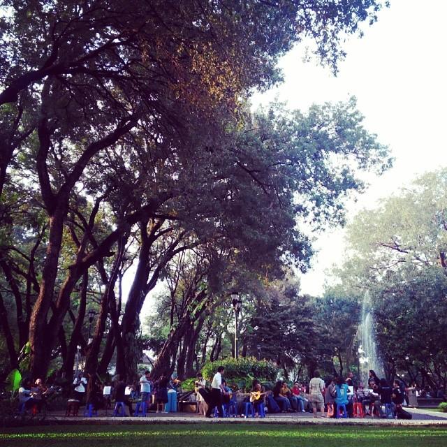 Sebuah harmoni di dalam taman kota yang menyenangkan :)