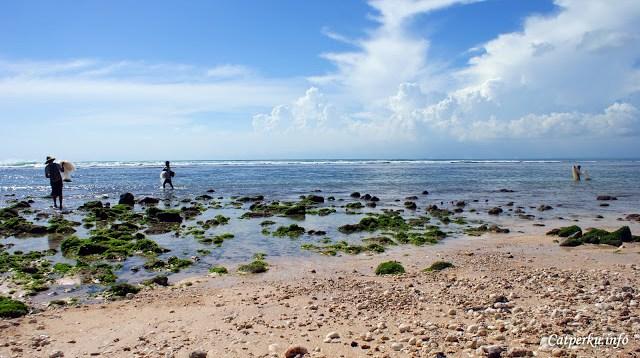 Saya pun tidak tahu apakah ada banyak ikan yang didapat dari pantai yang lebih banyak turisnya ini?