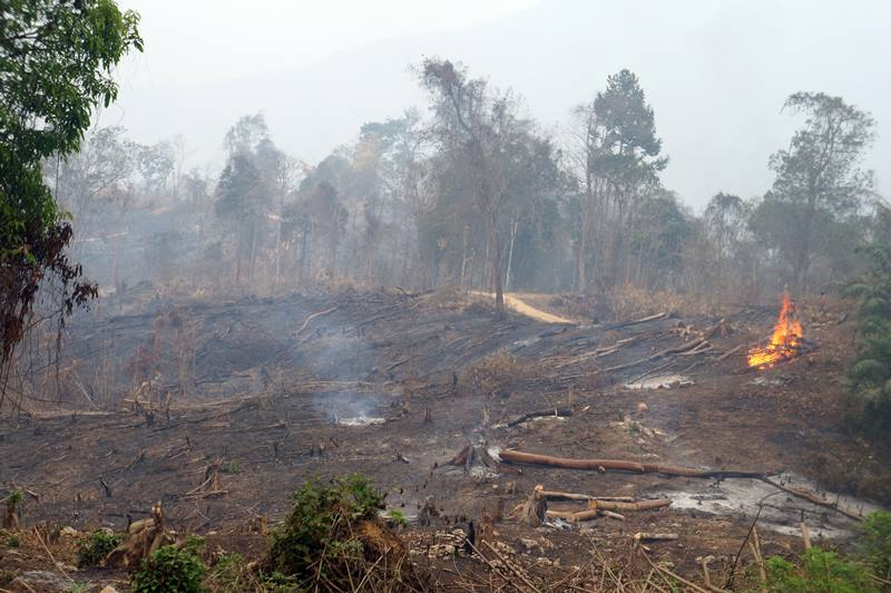 Api masih menyala di Kabupaten Passer, ketika baru saja memasuki Kalimantan Timur