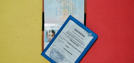Buat SIM internasional memangnya saya mau kemana sih!