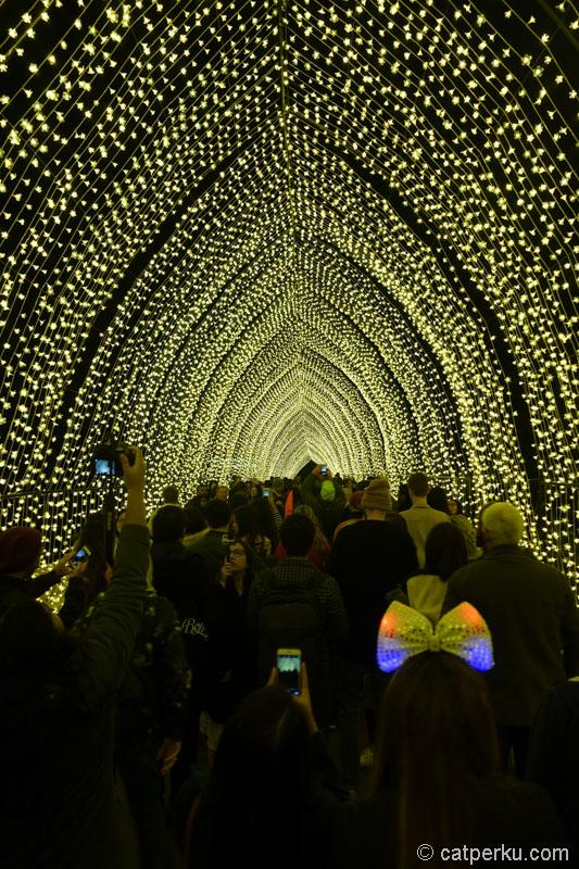 Tunnel Of Light, salah satu atraksi vivid yang paling populer. Lokasinya di Botanical Garden, gak jauh dari Circular Quay.