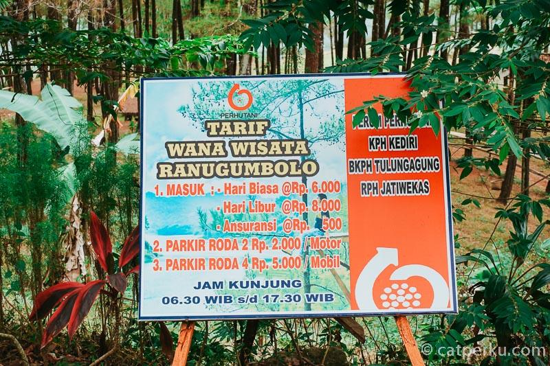 Harga tiket masuk ke Ranu Gumbolo Tulungagung ini cukup terjangkau!