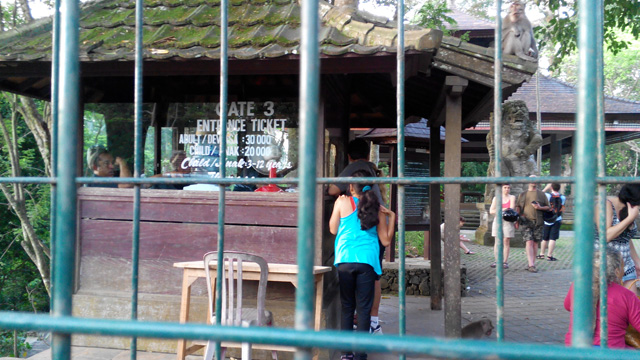 Ini dia gerbang Monkey Forest bagian belakang :D
