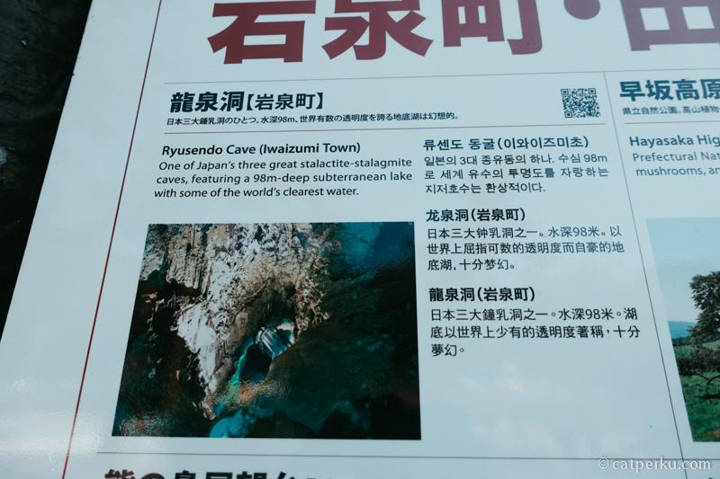 Ini termasuk salah satu gua terindah di Jepang, sayang dong kalau gak mampir